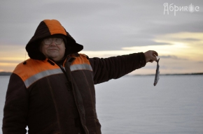 Рыба — деловодяное