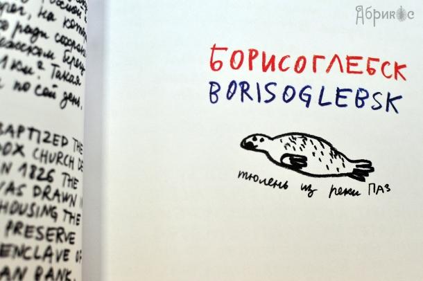 Борисоглебск, тюлень из реки Паз, иллюстрация Александра Флоренского
